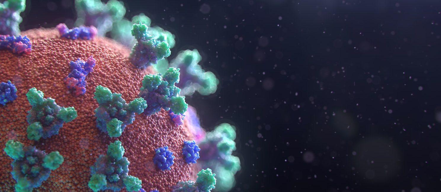 Life After Coronavirus